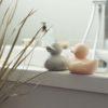 canard oli & carol - un nid dans les nuages